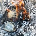 "on ""burning words""…"