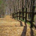 the mysterious path of a generous grace…